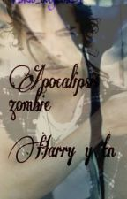 APOCALIPSIS ZOMBIE HARRY Y TU by magicrobin