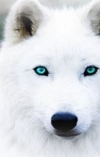 The White Wolf by Sabrina_Beckman