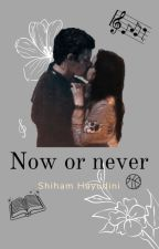 Now or Never by Shawmilaaddict