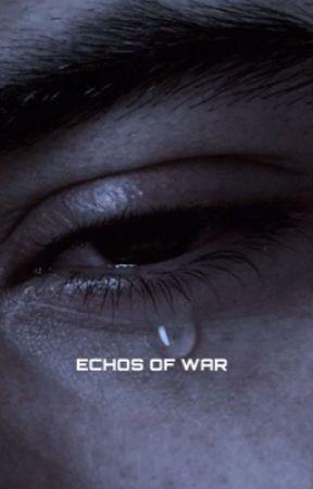 ECHOS OF WAR - MURDER MYSTERY  by welldamnroe