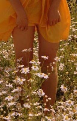 Đọc truyện dành riêng cho choi jinri, đoá hoa đẹp nhất trên d