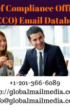 Chief Compliance Officers (CCO) Email Database by luciasoni