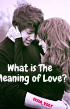 What Is The Meaning Of LOVE? by Echa_VOLT