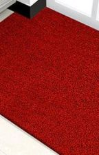 PVC Coil Floor Mat by sandychenmats1