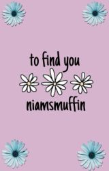 to find you « niam by niamsmuffin