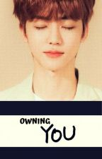 Owning You - A Na Jaemin Fanfic by Kainingwen