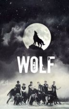 Wolf (EXO) by simoneyydaisies