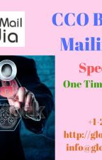 Chief Operating Officer (COO) Email List by luciasoni