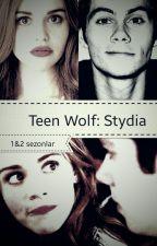 Teen Wolf: Stydia by papyonlubagyan