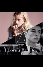 I Love a Bad Boy by Pink_Love_