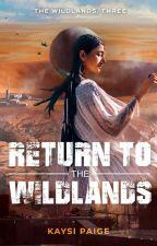Return to the Wildlands (Book Three: The Wildlands Series) by pictureXthisX