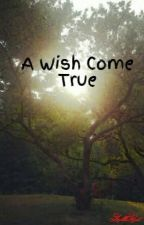A Wish Come True by AllliCat