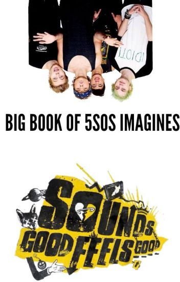 Big Book of 5SOS imagines