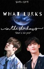 what lurks in the shadows || kyh x kws by yunrosiee