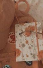 diary ✨ by sweet-peachy