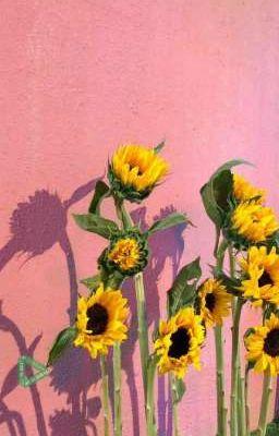 Đọc truyện •|KookTae|• Endless Summer•