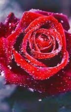 Is it love?Colin  (pause)  by cynthiadu37