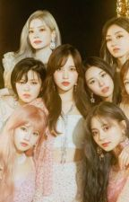 What could possibly go wrong? A male reader X Twice fan fic by SGboy03