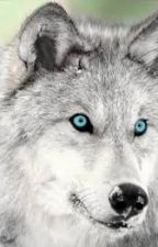 the silver wolf by tikasgattie