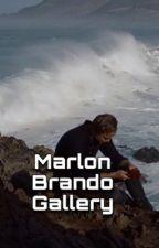 Marlon Brando Gallery  by lul-redd1