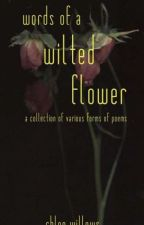 words of a wilted flower || poems and rantings  by keraxotic