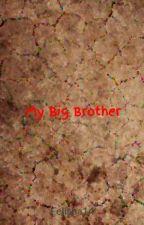 My Big Brother(captainsparklez fanfic) by Felisha14