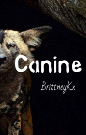 Canine by BrittneyKx