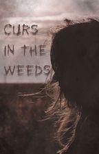 Curs in the Weeds by Saku_AntiqueGarden