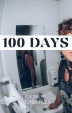 100 Days → irwin by wonderlex