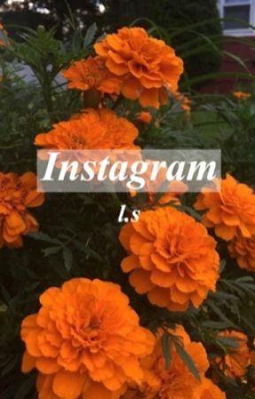 Instagram   L.S by squealinglarry