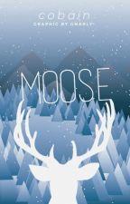 Moose by dennynut