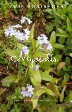 Myosotis by Amiedani
