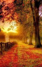 Beautiful Life by Edmarie2014
