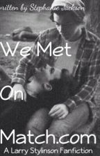We Met On Match.com (A Larry Stylinson Fanfiction) by Horaner4701