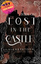 Lost in the castle by SilviaKrpatova