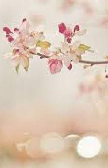 Chuyện cũ của Lịch Xuyên (full) + Ngoại truyện