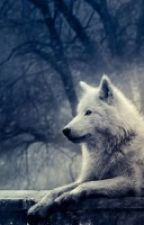 Wolves Love by Lena_Lawley1111