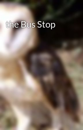 the Bus Stop by SiouxsieMcMullin