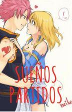 Natsu x Lucy  sueños partidos by mitums