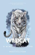 WildCat by PracticallyAwk