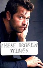 These Broken Wings  by Asupernatural0tter