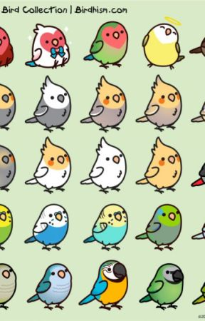 Parakeet petition by Localsoftii-