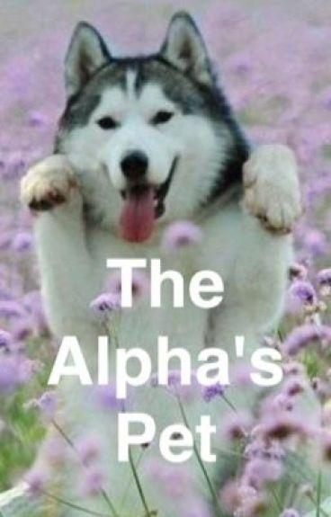 The Alpha's Pet