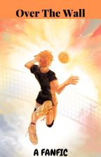 Over The Wall {Hinata x Reader} by anime_influencer34