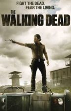 The walking dead  by BrittanyHeath1