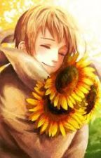 Be my Sunflower (Russia x Reader) by aspiring-writer