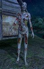 skyrim zombie apocalypse (skyrim fanfiction) by IlyaWilson