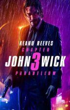 John Wick 3 Parabellum (John Wick x Reader) by LayceJ25
