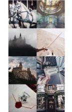 The Wizarding World || SGE fanfic  by queeninclumps