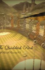 The Quidditch Pitch - Oliver Wood Love Story by HalfBloodPrincess93